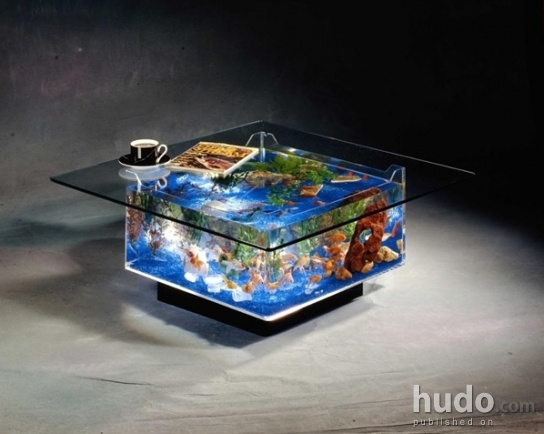 How cool is that a tablequarium!