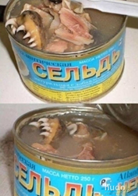Russian canned tuna