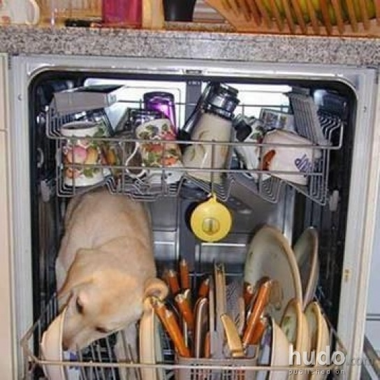 This is what happens inside the dishwasher