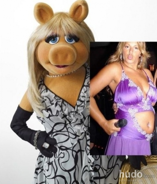 Miss Piggy she&#039;s so cool that real women wanna look like her