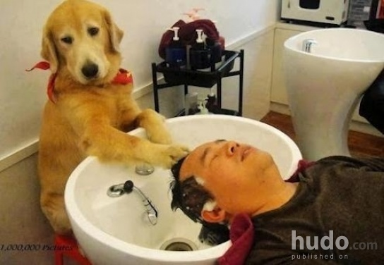 Do you care for a relaxing scalp massage?