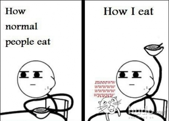 How normal people eat vs. how people with cats eat