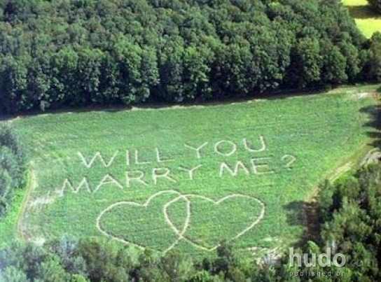 Have you ever seen a proposal like that?